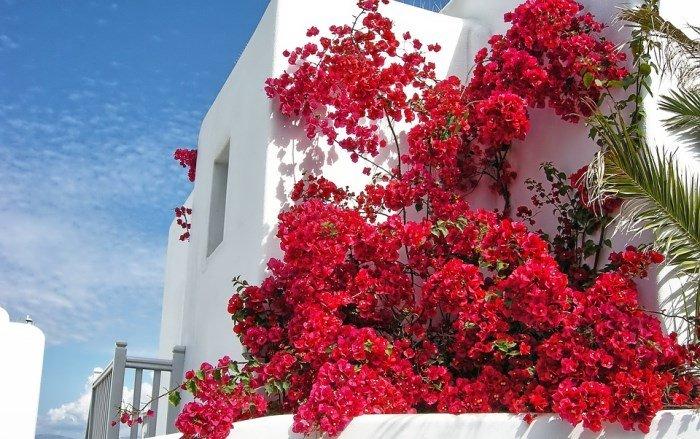 отдых и погода в Греции в апреле